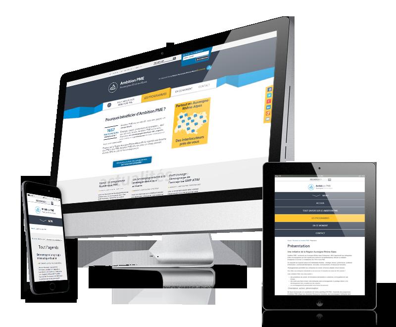 Portail web pour lesprogrammes Ambition PME (Aura)